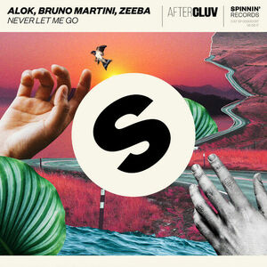 Alok Bruno Martini